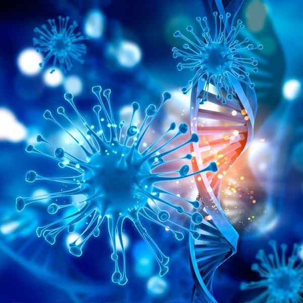 Células madres la solución a la calvicie
